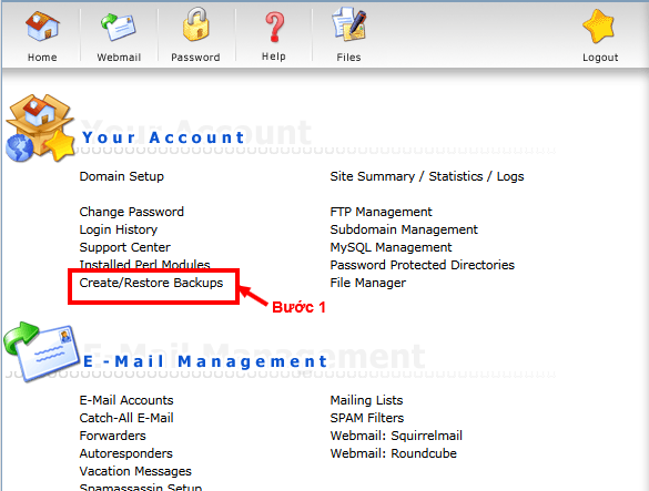 Bạn đăng nhập vào quản trị hosting